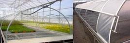 mesas cultivo mini tunel