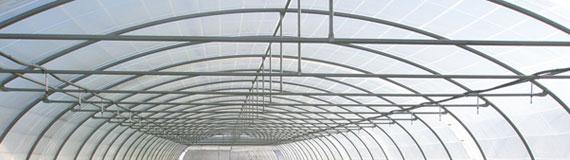 tunel agricola tirantes